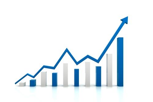 Stock Holdings